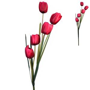 Tulip Roșu 95 cm
